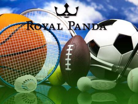 Take a Longshot prediction at Royal Panda